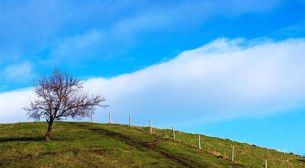 Hi,China Beautiful sight of Yili almond ditch banner